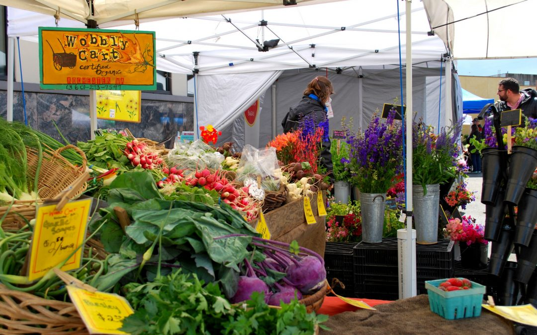 Senior Farmers Market Vouchers
