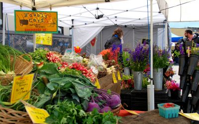 Senior Farmers Market Vouchers